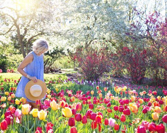 Gardening in cyprus